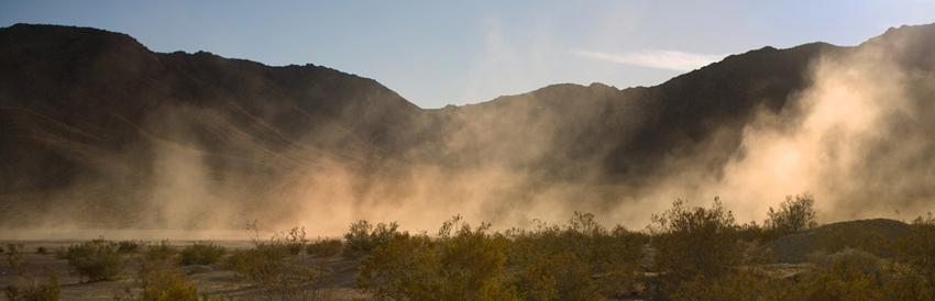 Dust-Pollen-Resistant-850px